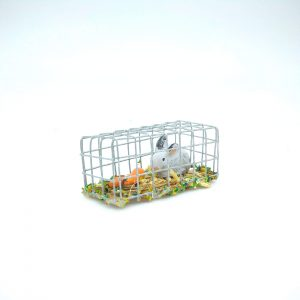 CAGE LAPIN+CAROTTES